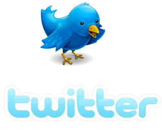 Twitter n'est pas la solution miracle